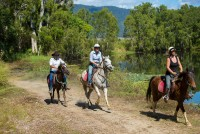 Blazing Saddles Horse Ride and ATV Combo Tour