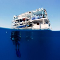 Reef Encounter liveaboard trip