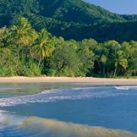 Cape Tribulation Beach 2