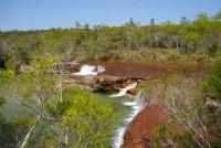 Oz Tours 8 Day Cape York Safari Fly/Drive - Fruitbat Falls