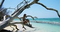 Ocean Free - Green Island