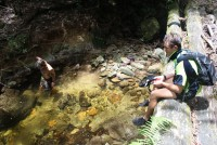 Cairns Hiking Tour