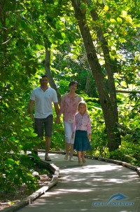Green Island rainforest walk