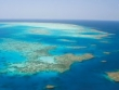 Reef & Rainforest Packages
