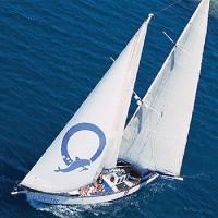 Green Island Sailing