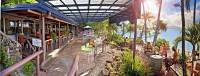 Fitzroy Island Resort Foxy's bar