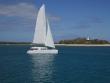 Reef/Island Trips - Port Douglas